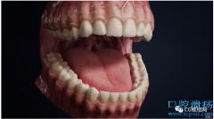 口腔模型制作和渲染制作流程