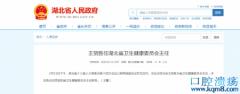刘英姿被免去湖北省卫健委主任职务任命王贺胜为省卫生健康委员会主任