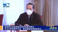 湖北省委书记蒋超良干嘛去了?武汉封城后,蒋超良、马国强的21天