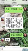 两周前,刘智明妻子蔡利萍向我们展示微信对话,没想竟是诀别