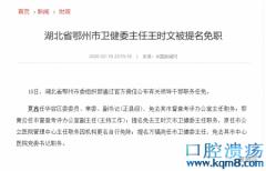 湖北鄂州卫健委主任王时文被免职,又是个外行