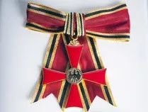 我们欠钟南山,石正丽,管轶这样的人一枚不一样的勋章