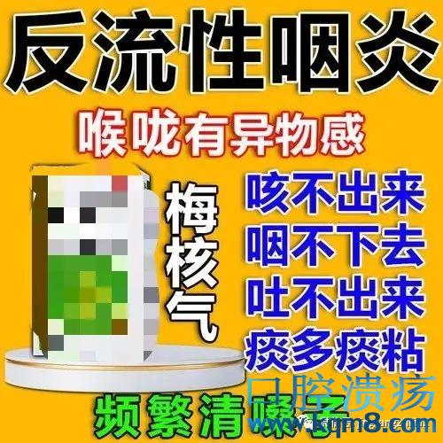禹州鸿畅梅杏的制作方法